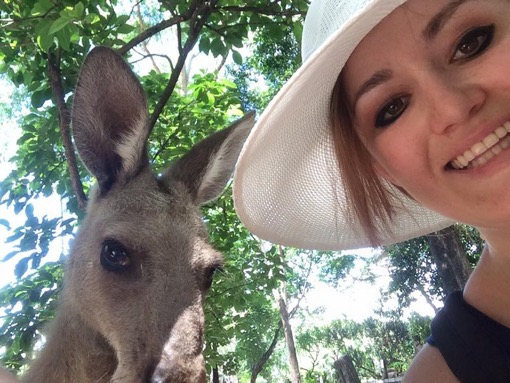 Kangaroo Photo Bomb Australia