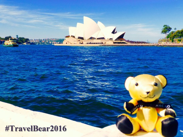 Conrad Bear sitting by Sydney Opera House - #TravelBear2016