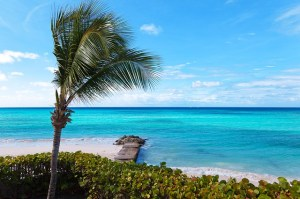 Quick Ways to Shop for Travel Deals