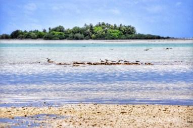 Rangiroa-Tahiti035