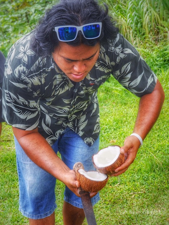 Waar we verse kokosnoot te eten kregen...
