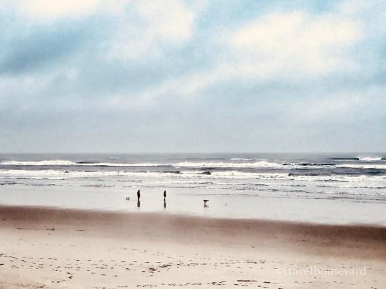 Ameland telt 27 kilometer stranden.