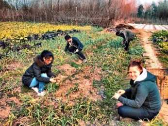 Things I Learned Volunteering on a Farm in Southern China