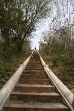 Stairs to Wat Chompet