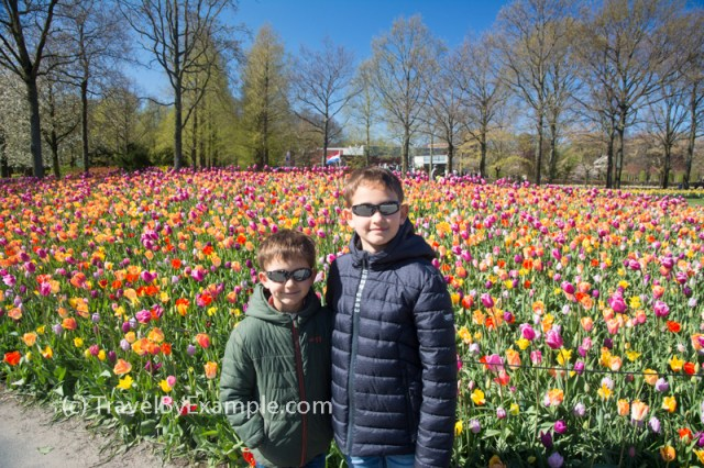 Burst of colors at Keukenhof