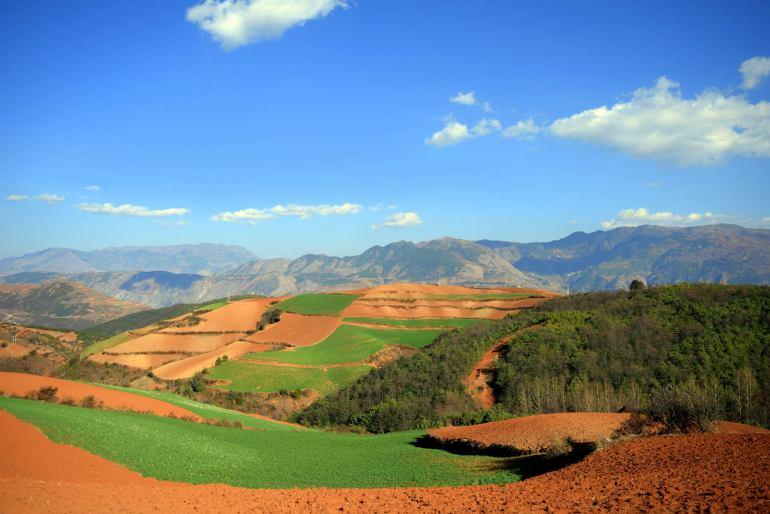 הטבע הפראי של דונגצ'ואן (צילום:טל ניצן)