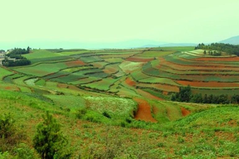 הטבע הפראי של דונגצ'ואן (צילום: גיל טובול)