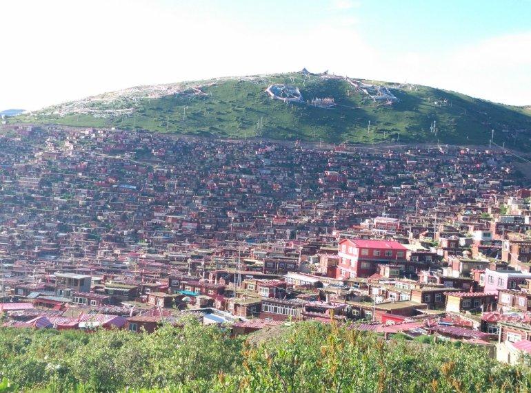 האקדמיה מתפשטת בעקביות לעבר פסגות ההרים שמקיפים את העמק (צילום: חיים קלאי)