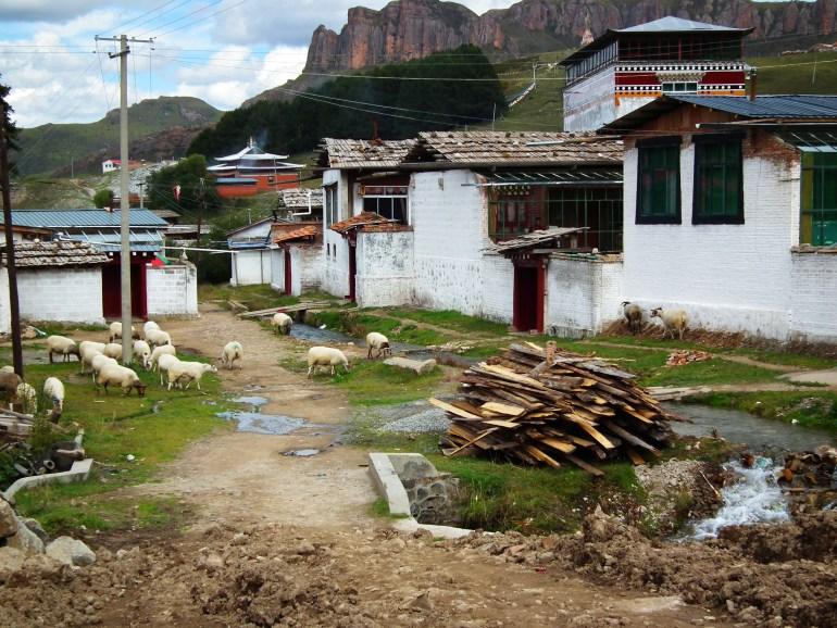העיירה לאנגמוסה - שקטה ואותנטית (צילום: טל דרניצקי)