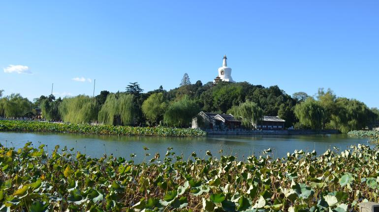 פארק בייחאי (צילום: נוגה פייגה)