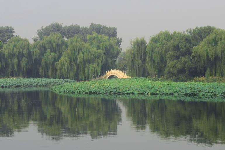 גשר אבן משוחזר (צילום: טל ניצן)