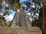 On of Tikal's towering temples