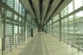 Sky bridge between the two Petronas Towers