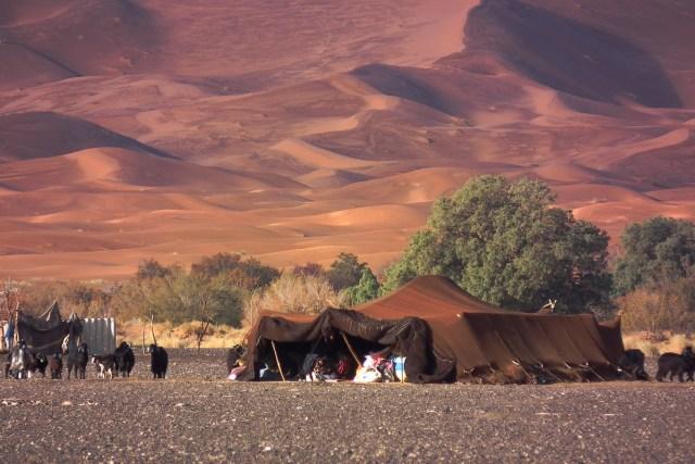 02.遊牧民族搭帳篷落居沙漠深處。