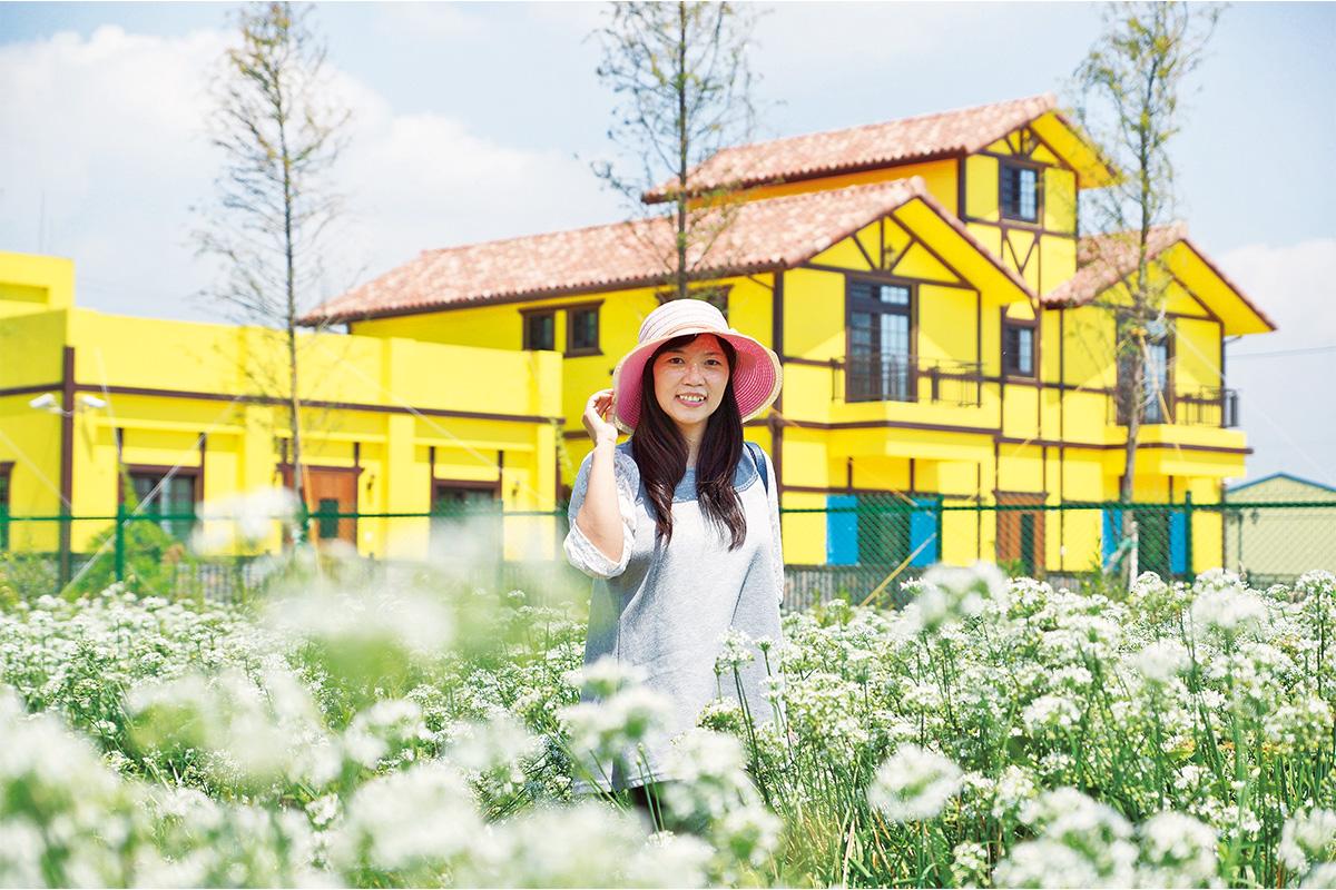歷史小鎮營造全新風貌  韭菜花季慢遊賞木藝館