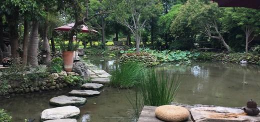 行遍天下新聞,新竹,千甲水園聚落,雄獅旅遊