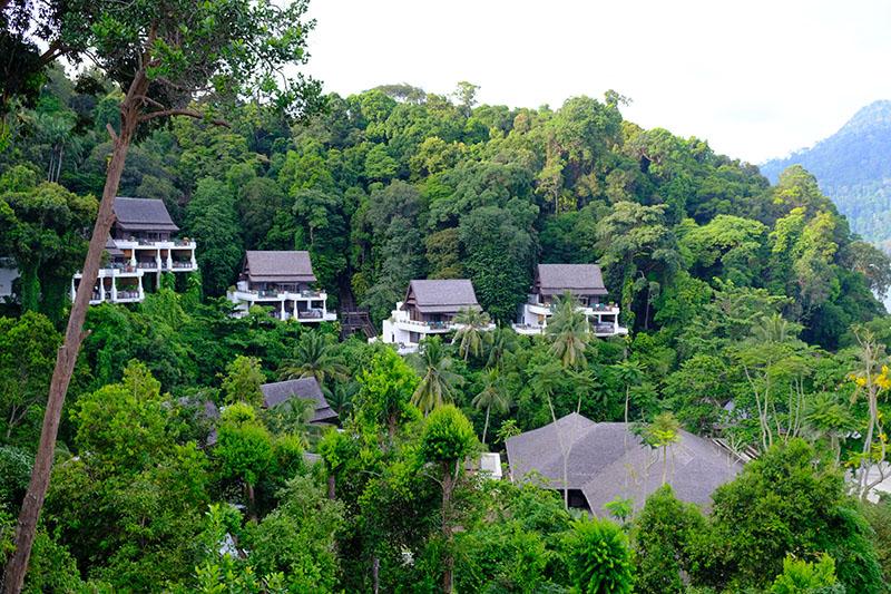 帕華洛帝來到這哭了!一島一飯店   馬來西亞的「百年雨林」渡假村