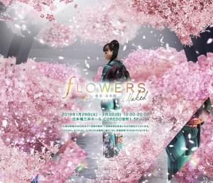 【影片】美到你嫑嫑的!日本最新賞櫻型態
