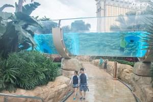 在透明大水管游泳 澳門3樓的2千坪水上樂園