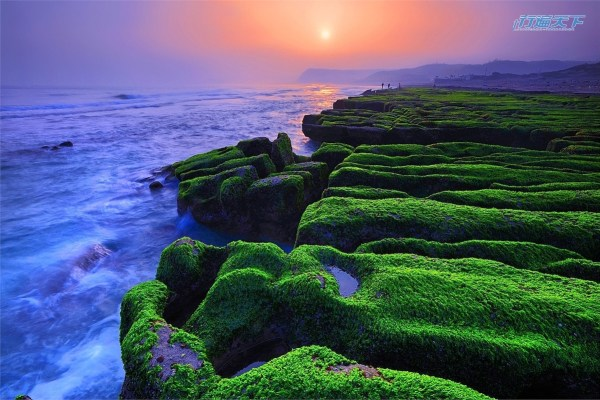 新北市 ,石門 ,北海岸,老梅 ,老梅綠石槽 ,老梅迷宮