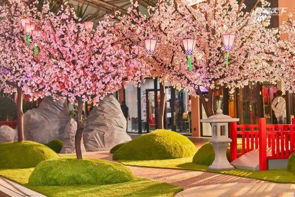 MITSUI OUTLET PARK,台中港,櫻花,神社,日式,野餐