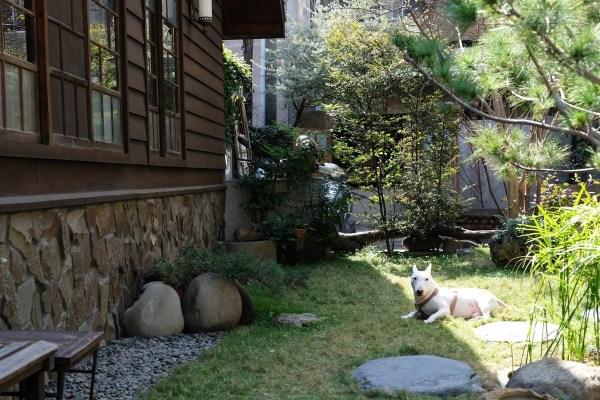 台南,神秘咖啡館,日式老屋,錫鼓