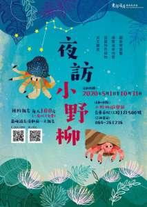 夜訪小野柳,台東,環境教育