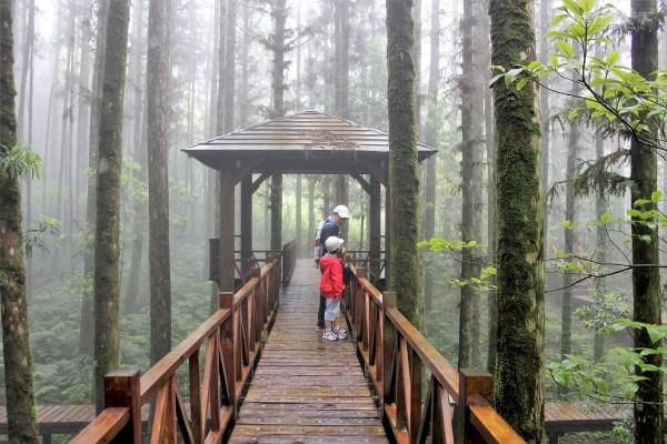 宜蘭,大同鄉,明池森林遊樂區,棲蘭森林遊樂區,力麗馬告生態園區