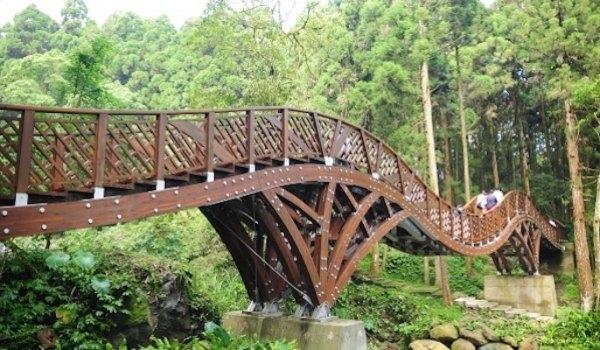 溪頭,南投,森林遊憩區,芬多精,生態教育