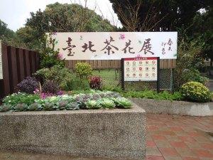 山茶花,陽明山,花季,花卉試驗中心