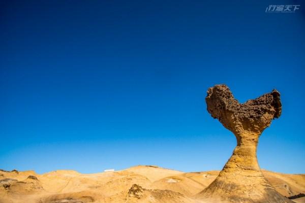北海岸,野柳,女王頭,燭台石,愛心岩