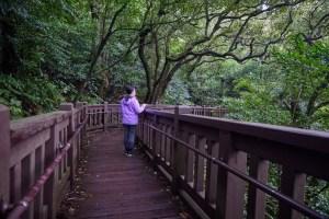 台北,陽明山,二子坪步道,賞蝶,無障礙旅遊