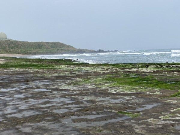 老梅綠石槽,石門,東北季風,藻類,海藻,秘境,打卡