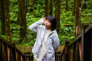 森林,芬多精,抱樹,自然景致