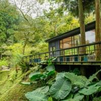 新北旅遊|7座大安森林公園大的熊空茶園 可以喝到馥香回甘的純淨好茶