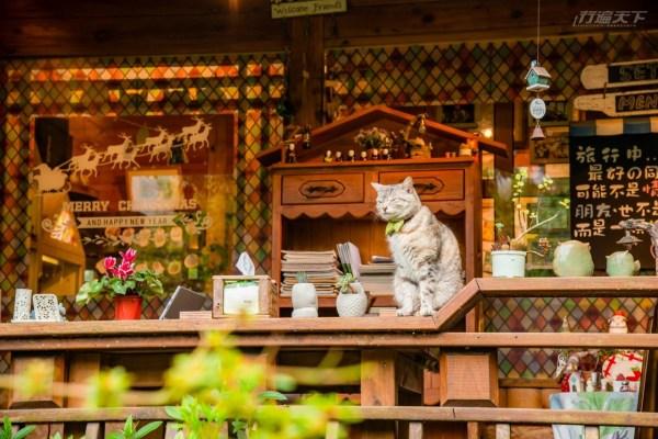 滿是巧思創造地中海風格民宿的橄欖樹,有著如家一般溫馨的舒適感受,而曾吸引知名歌手齊豫前來入住。如今在第三代接手下,更將17年前,爺爺親自於一大片橄欖樹園裡建造的木房,保有主體木質建築裡裝飾童趣自然風的擺設,營造出可愛鄉村風格的主咖啡屋,令人於咖啡香中品嚐各式飲品、套餐、午茶及與手工餅乾,同時還有特別規劃的整面城堡造型櫃,蒐羅各式各樣手作雜貨、彩繪和併貼作品、玩偶及一系列貓咪相關商品,提供購買收藏。