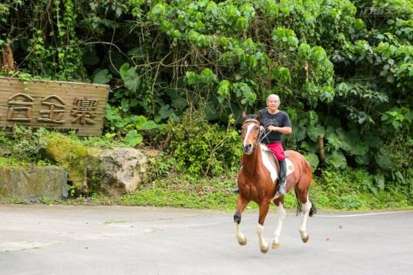 花蓮,小隱居,山寨,以合金寨,騎馬,農事體驗