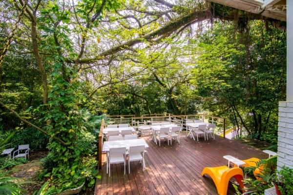 秘境美食,好樣秘境,陽明山,玻璃屋,植物,森林