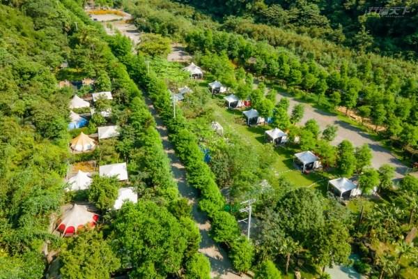 宜蘭,露營,野奢露營,鳳梨屋,水鞦韆