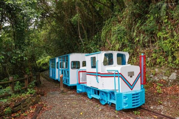 花蓮景點,池南國家林遊樂區,蒸汽火車,鯉魚山步道,森林浴,蹦蹦車