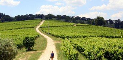 Umbria i Marche. Zielone serce Włoch