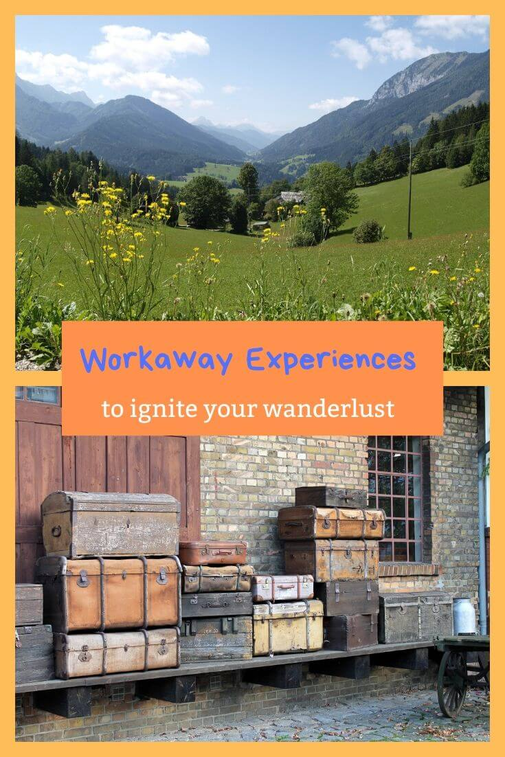 workaway testimonials