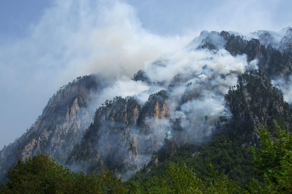 Forest fires Montenegro Durmitor Herceg Novi