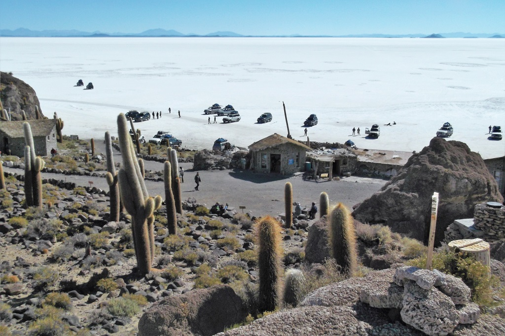 Everybody stops at Incahuasi Island in El Salar de Uyuni