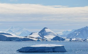 Need to Know? Planning Before Antarctica Trip during Covid-19