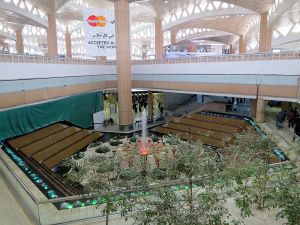 Saudi Arabia eases travel restrictions