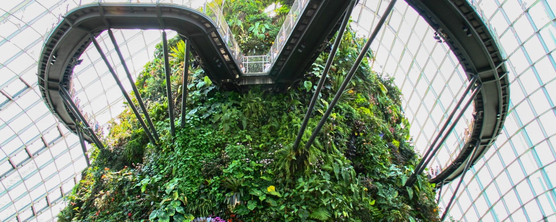 Garden by the Bay a Singapore, città dei divieti dove tutto è possibile