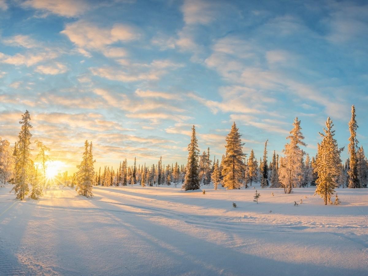 Cosa fare in Lapponia: paesaggio al tramonto