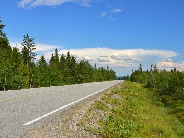 Strada in Lapponia finlandese d'estate