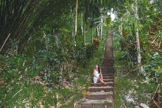 pirates bay stairs from charlotteville